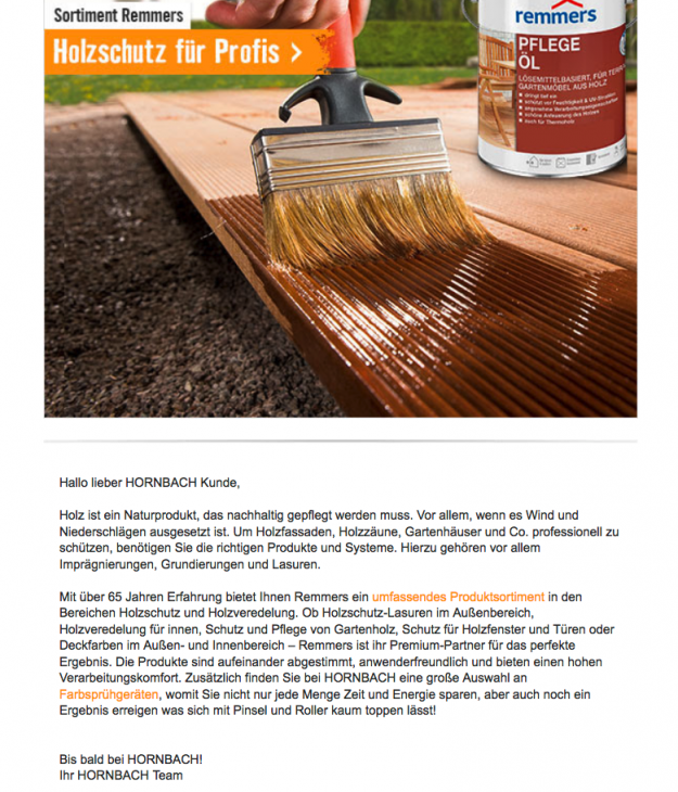 Screenshot Newsletter Hornbach