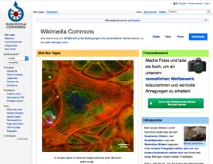 Screenshot Website Wikimedia Commons