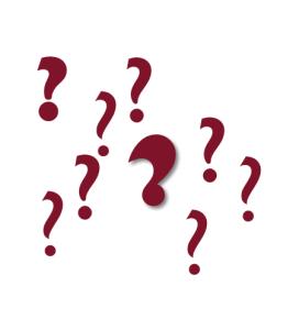 Befragungen – was können wir erwarten?