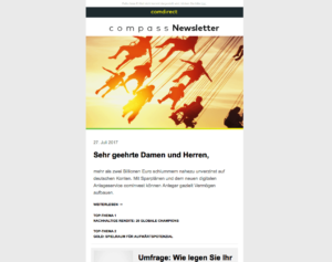Screenshot Newsletter einspaltig