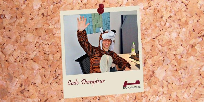 """Was macht eigentlich ein """"Code-Dompteur""""?"""