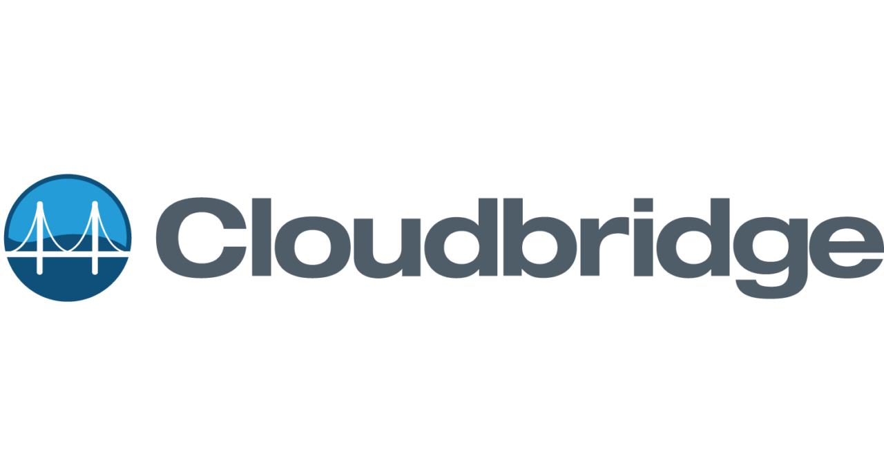 Cloudbridge Logo