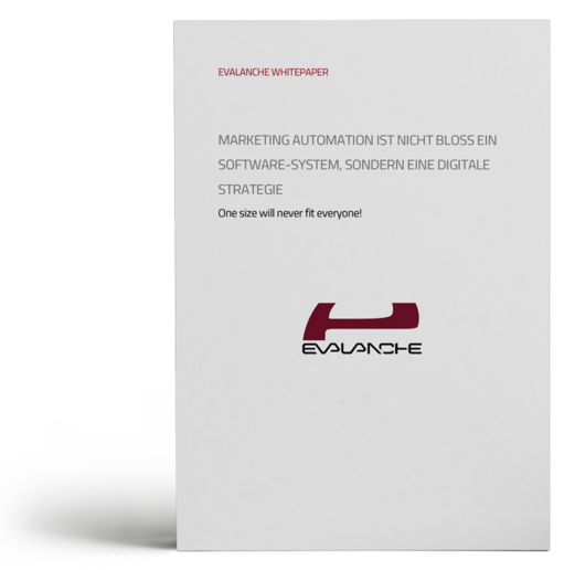 Marketing Automation Beispiele im B2B - Software vs. Strategie