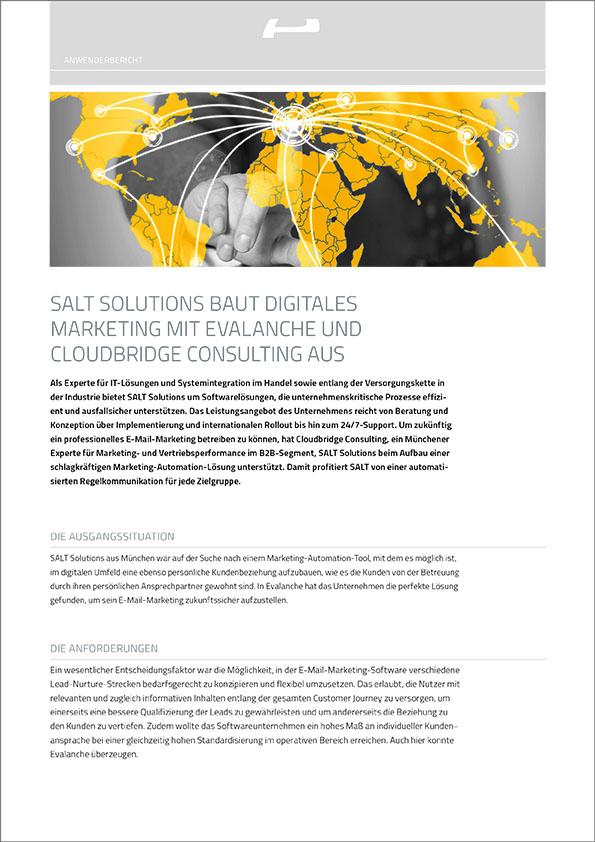 SALT Solutions baut digitales Marketing mit Evalanche und Cloudbridge Consulting aus